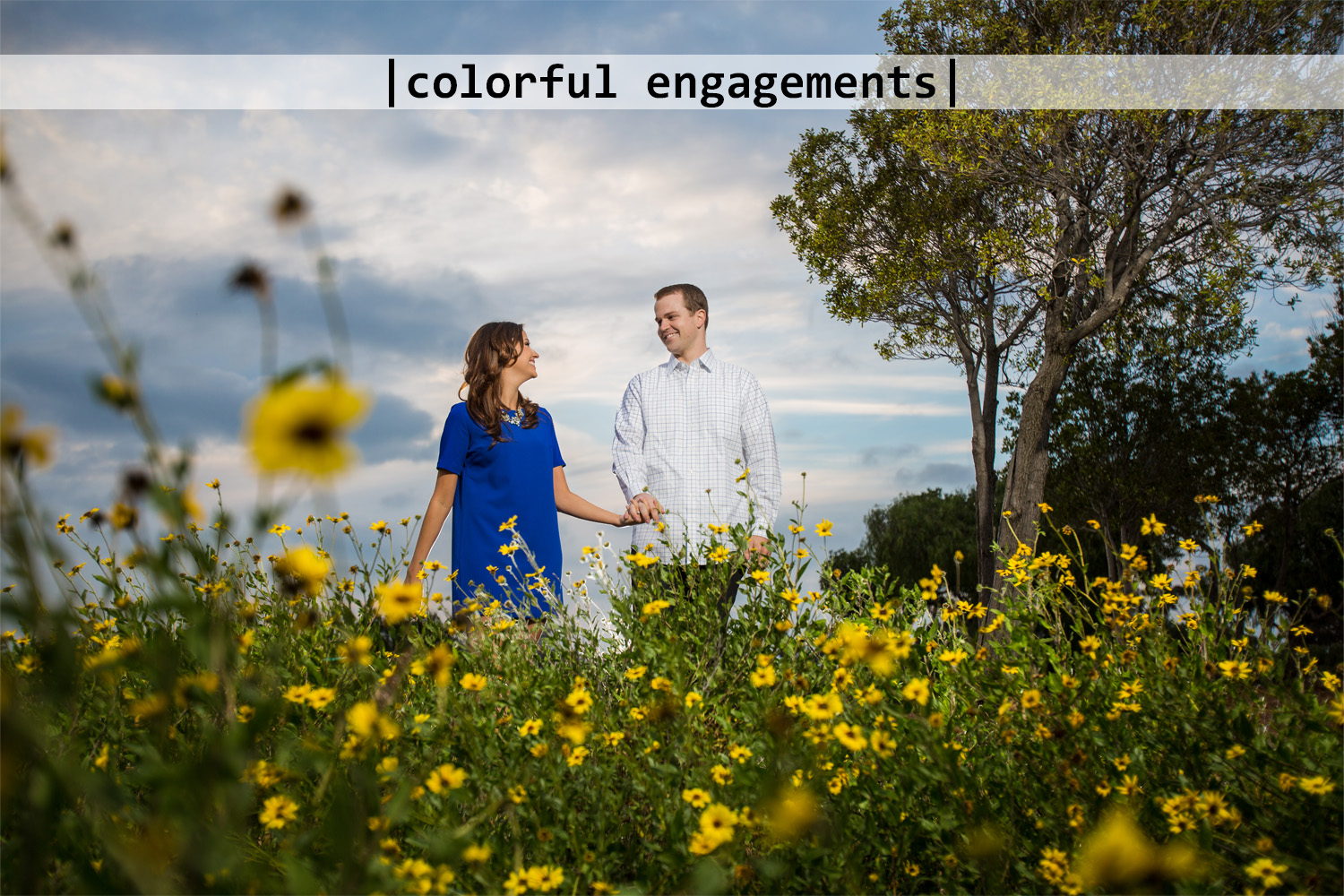 Colorful Engagements