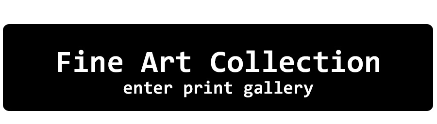 Fine Art Collection Print Gallery