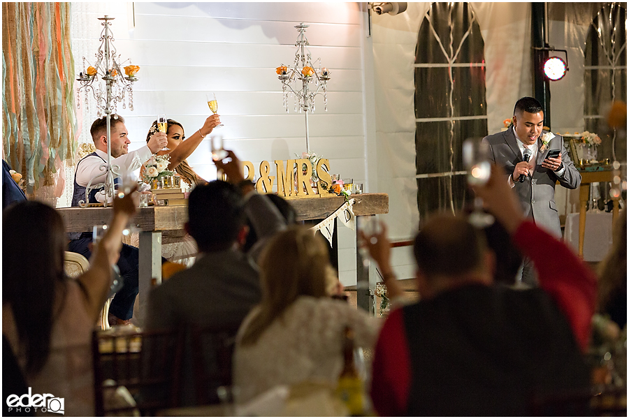 Toasts at San Diego Wedding