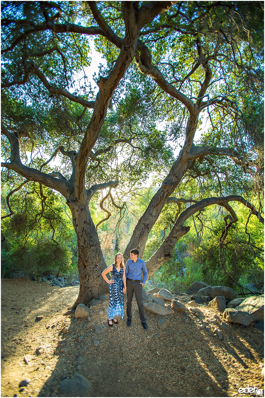 Mission Trails Engagement Session under a big tree.