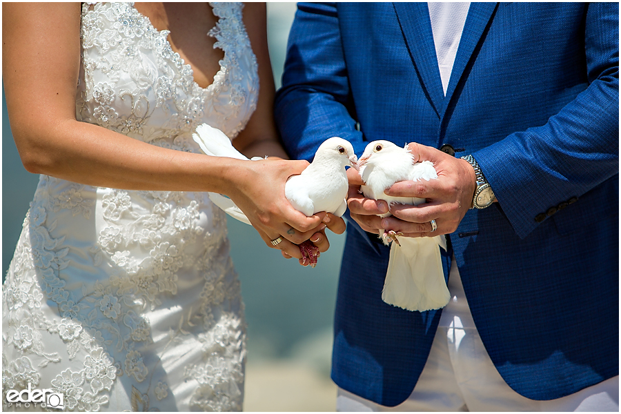 Doves from beach elopement at the Kona Kai Resort in San Diego, CA.