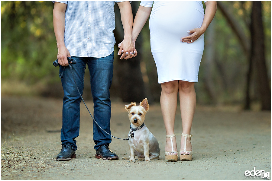 Rustic Maternity Photo in San Diego with cute dog.