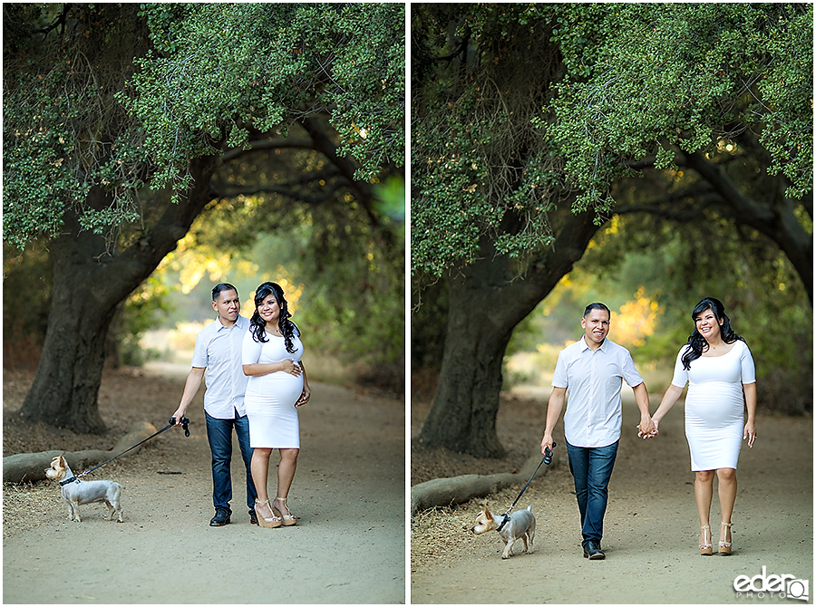 Rustic Maternity Photos in San Diego with dog.
