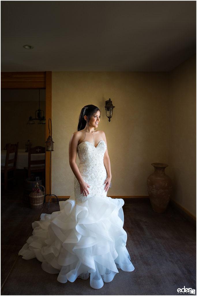 Vineyard Wedding bride portraits
