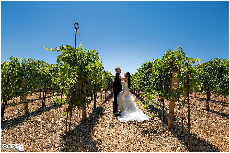 Vineyard Wedding first look