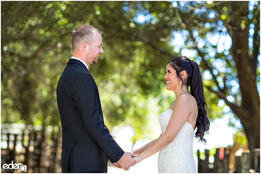 Vineyard Wedding bride and groom portraits.