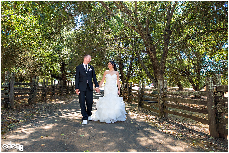 Vineyard Wedding bride and groom portraits.