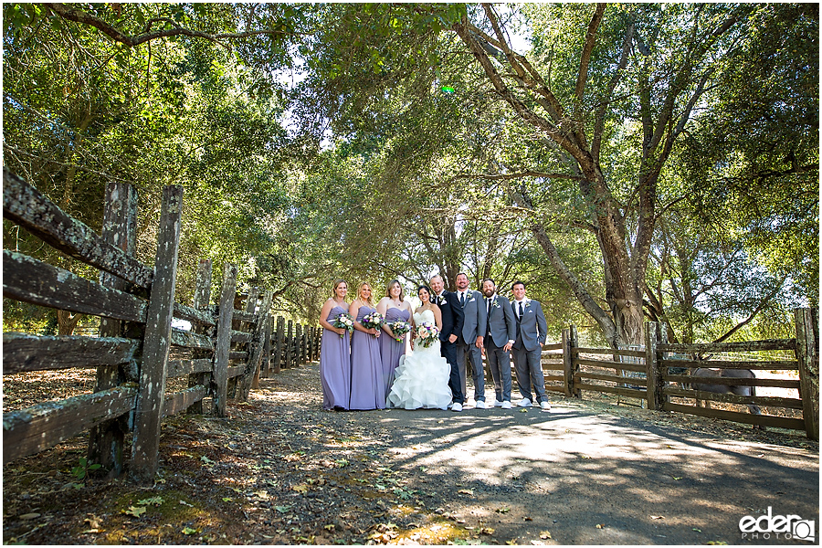 Vineyard Wedding party portraits.