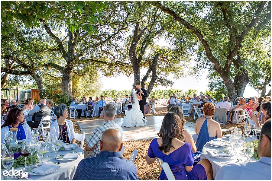 Vineyard Wedding reception first dance.