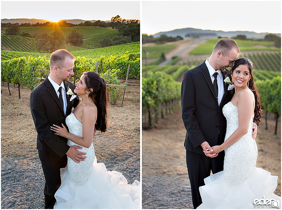 Vineyard Wedding bride and groom sunset natural light portraits.
