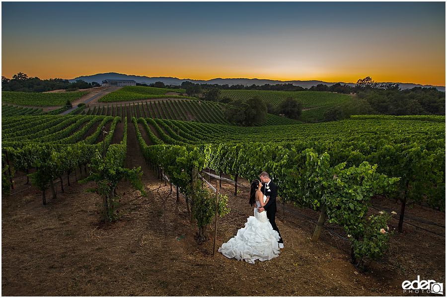Vineyard Wedding bride and groom sunset portraits.