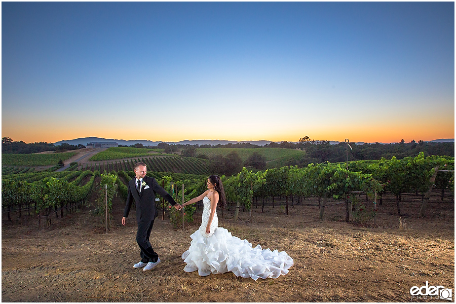 Vineyard Wedding bride and groom sunset portraits with flash.