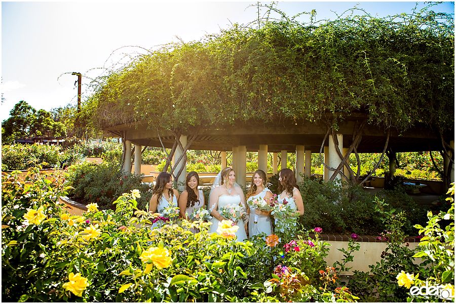 San Diego Natural History Museum Wedding - Bridesmaids in Rose Garden.